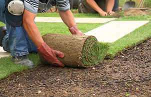 Online landscaping technology design course