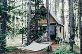 Cabin and Hammock in the woods